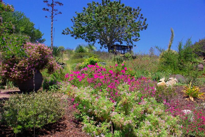 fragrance-garden_3996698154_o.jpg