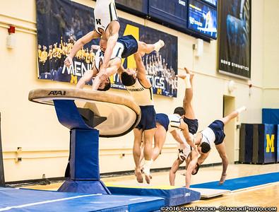 3-26-16 Michigan Men's Gymnastics Vs UIC (Senior Night)