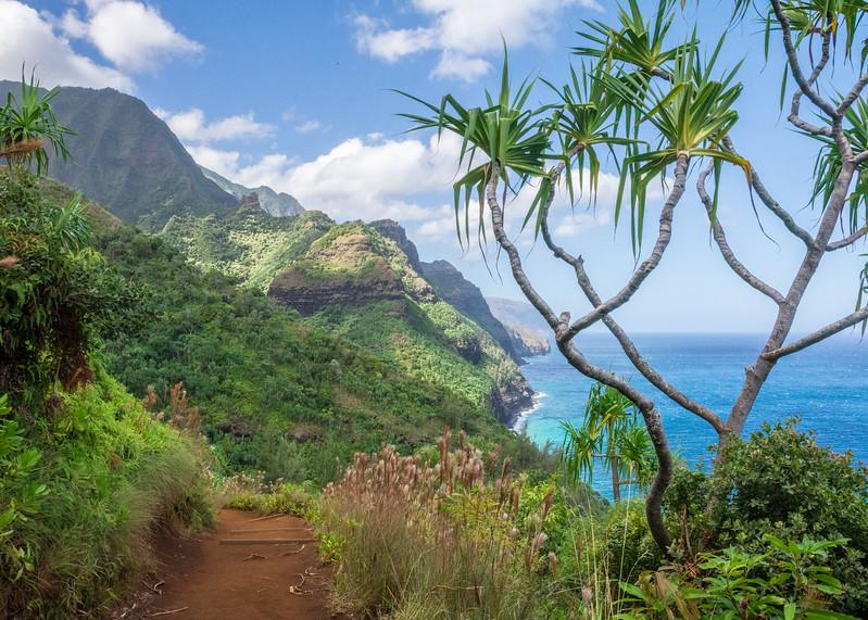 hawaii027.jpg
