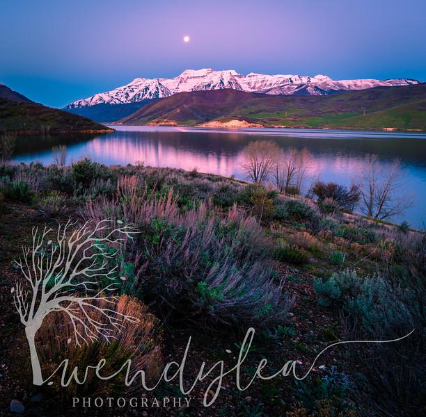 wlc Rainbow Bay Moon and TimpApril 12, 20175-Edit.jpg