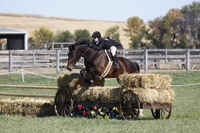 The Farm at Butterflat Creek / Hunter Derby / 10-12-2013