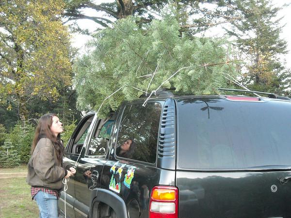 Christmas Tree Outing 2008