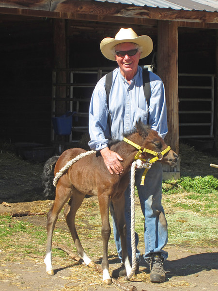 DWA Arabians' Robert Bouttier and one of his beautiful babies