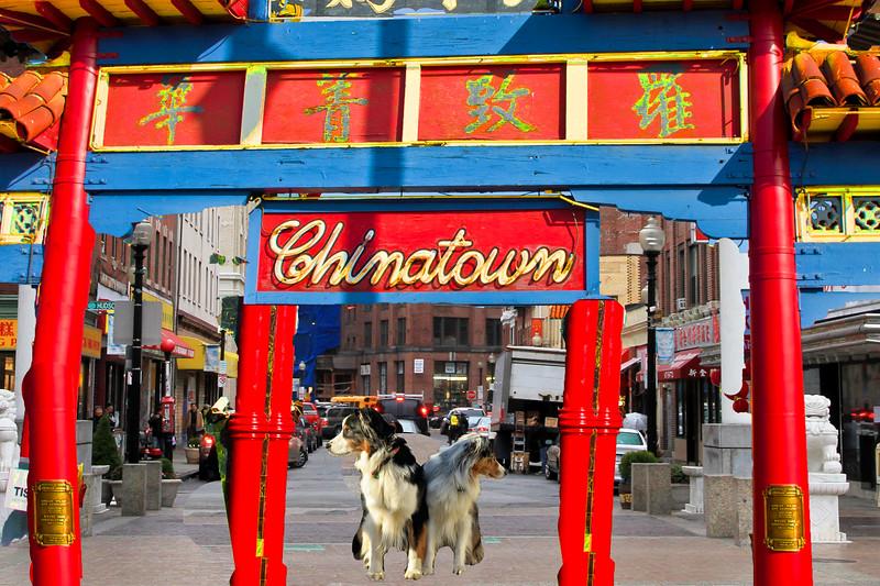 Chinatown.GaWy2.jpg