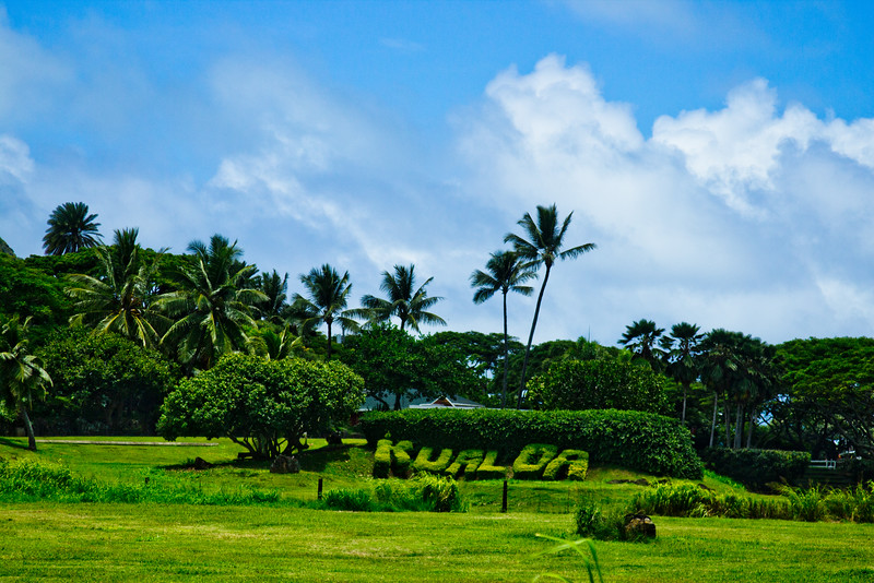 Journey into Oahu Photograph 57