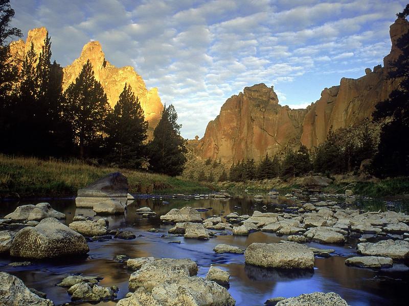 Nature43.jpg