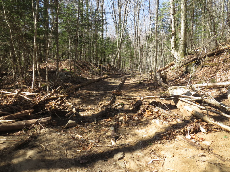 Rail beside the Bondcliff trail where there was no rail line, who the heck moved this!.JPG