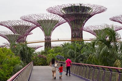 2013 Singapore Gardens and Zoo