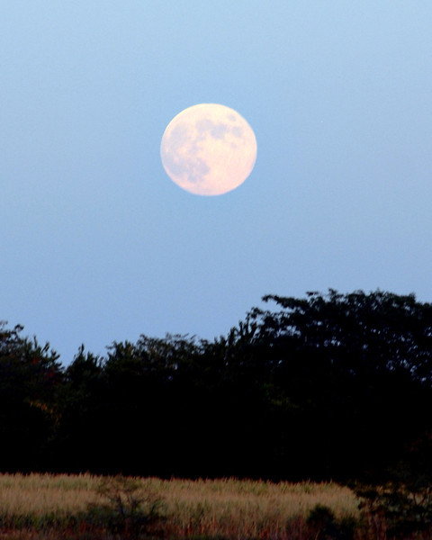 Moon rising Aug 1 2012 Eli Field.jpg