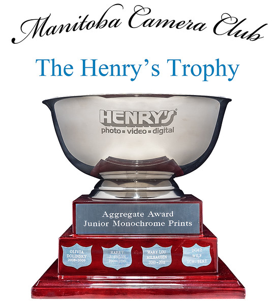 The Henry's Trophy 4.jpg
