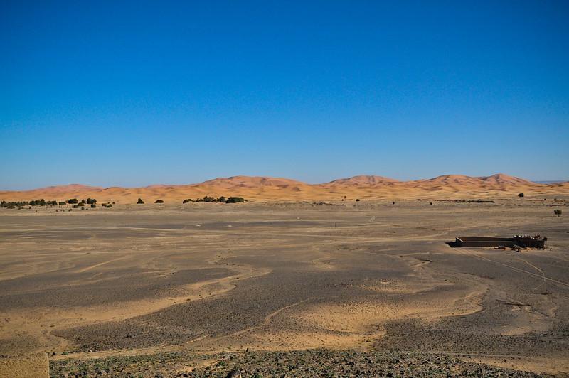 Day4-Sahara-1.jpg