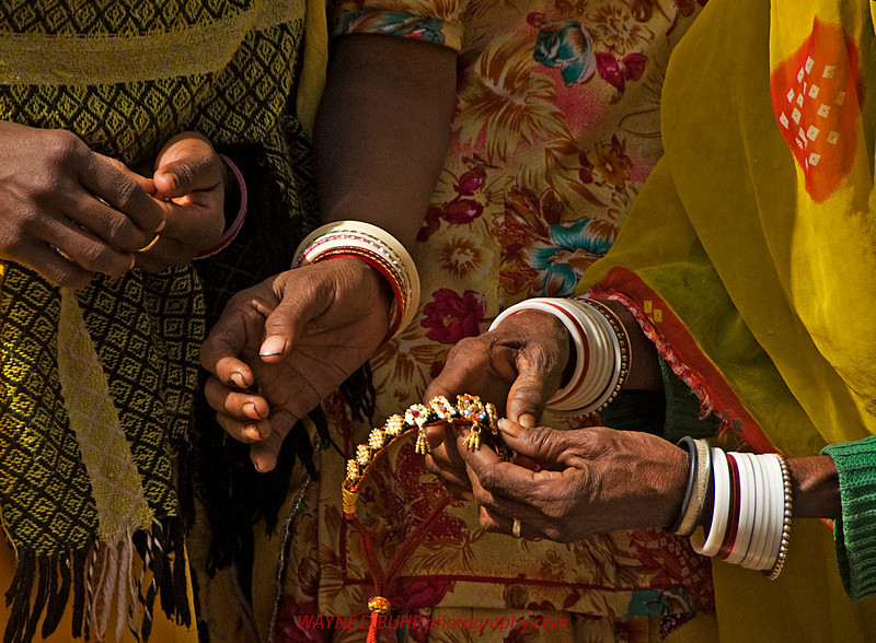 India2010-0211A-548B.jpg