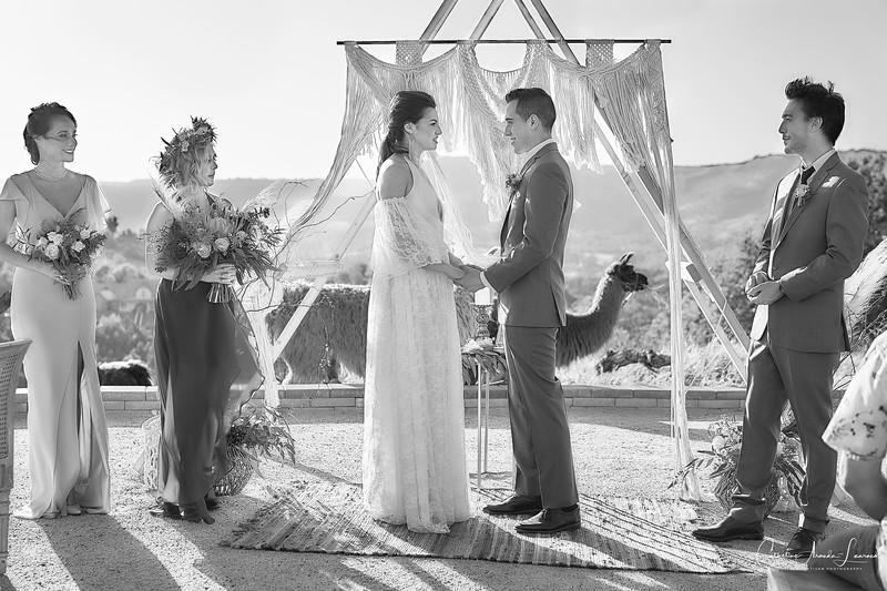 _DSC0400Emerald Peak Wedding©CAL. 1©CAL.jpg