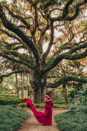 Salley Maternity Session 4/12/21
