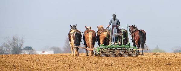 Women Plowing