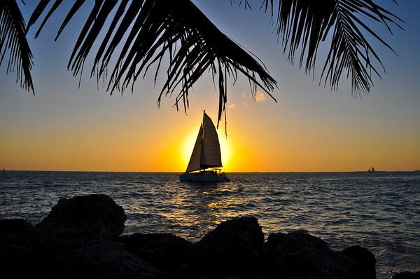 FLORIDA TRIPS