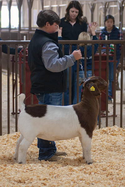 kay_county_showdown_goats_20191207-184.jpg