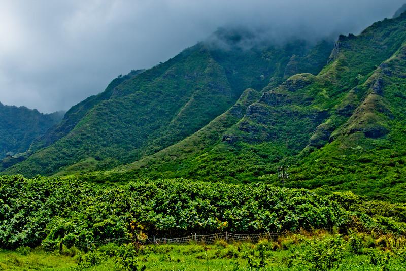 Journey into Oahu Photograph 77