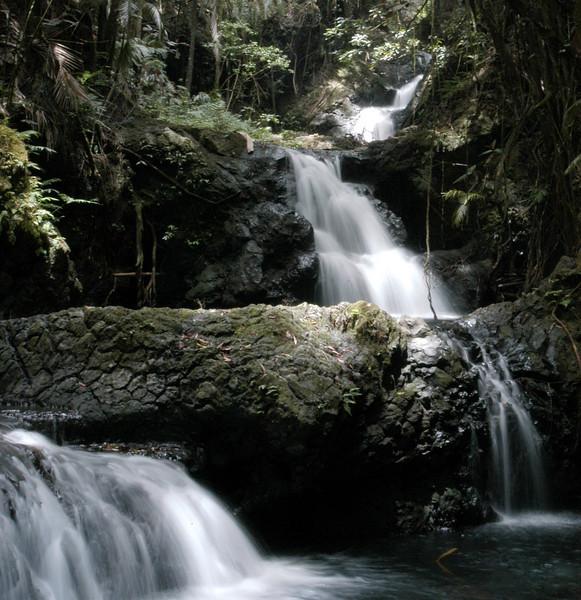 152- 20080410- Hawaii 15- Enroute to Hilo- Hawaii Tropical Botanical Gardens DSC_2684.jpg