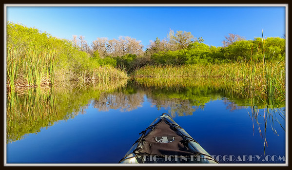 Big Cypress National Preserve 2-13-2016
