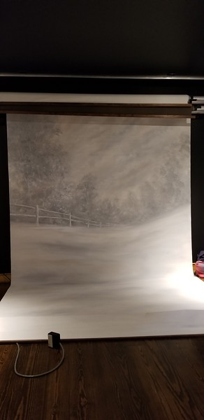 10x20 Muslin (for roller system) $400