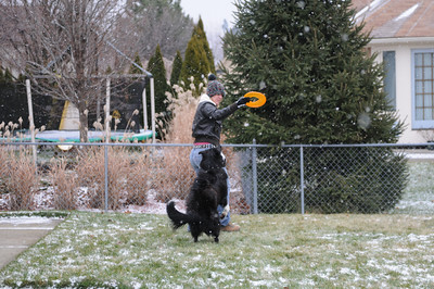 12-27-09   Mommy & Riley Play Frisbee