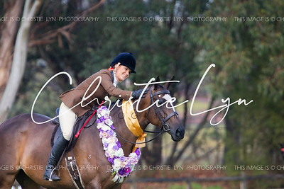 2019 EWA Winter Gala Hack and Hunter Show