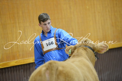 Jackpot Showmanship - 16 and Up
