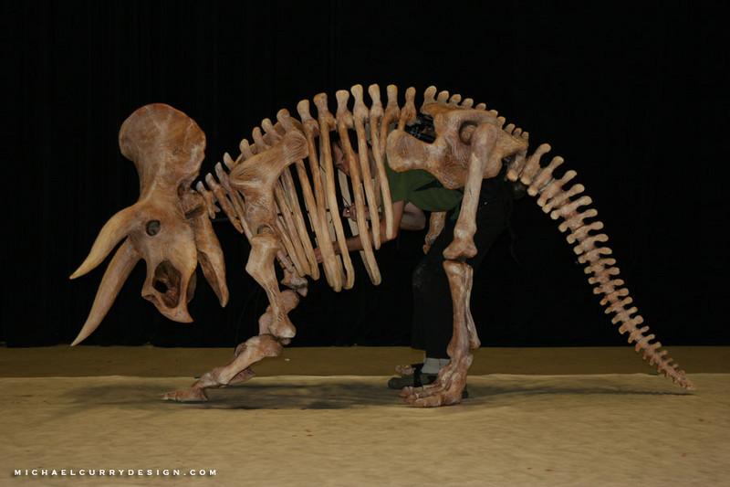 momix triceratops 1.jpg