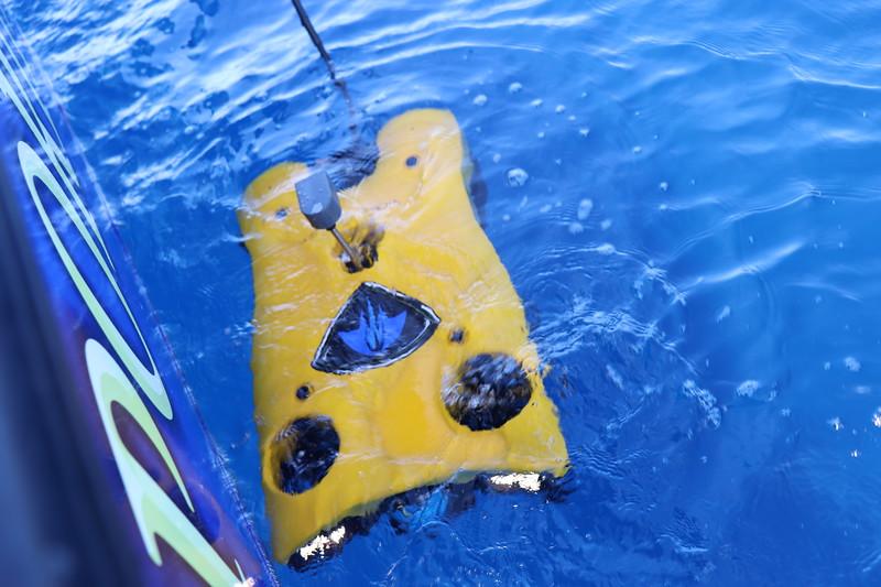 HRI-ROV-IMG_0839.JPG