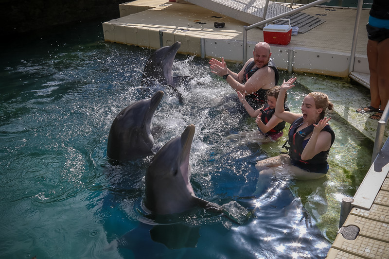 2019 August Dolphin Quest-128.jpg