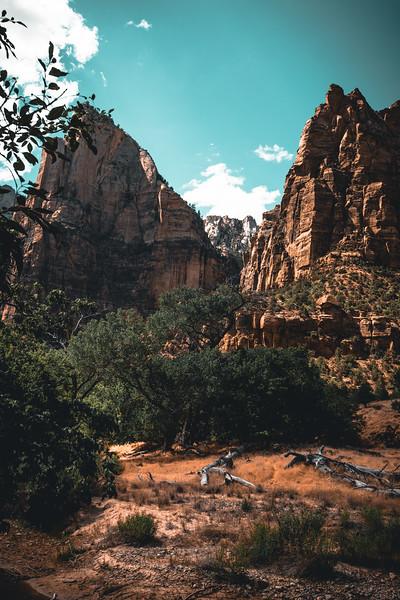 070320 Zion Hike-8637.jpg