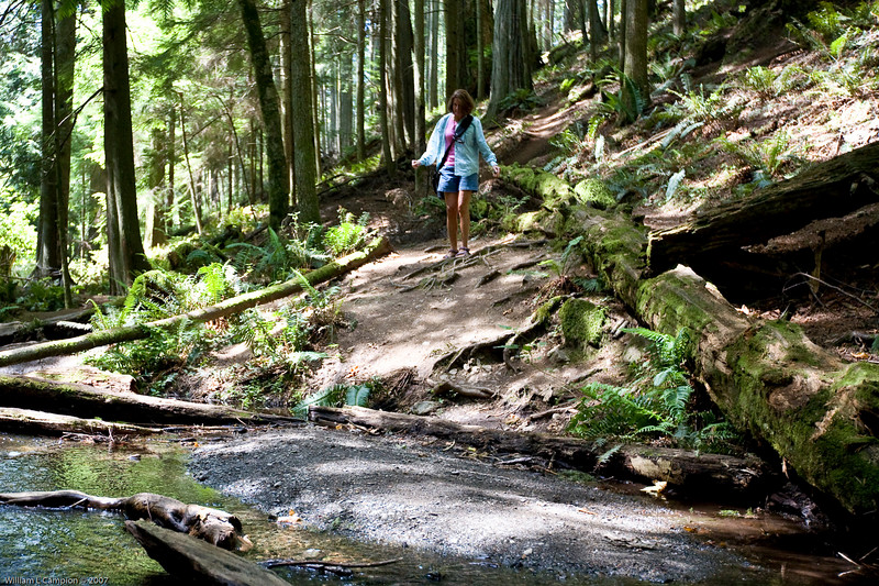 Hike thru Mount Consitution Morgan State park, Orcas Island