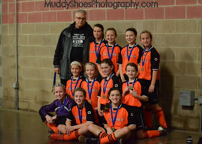 2011 National Regional Indoor Soccer Championship