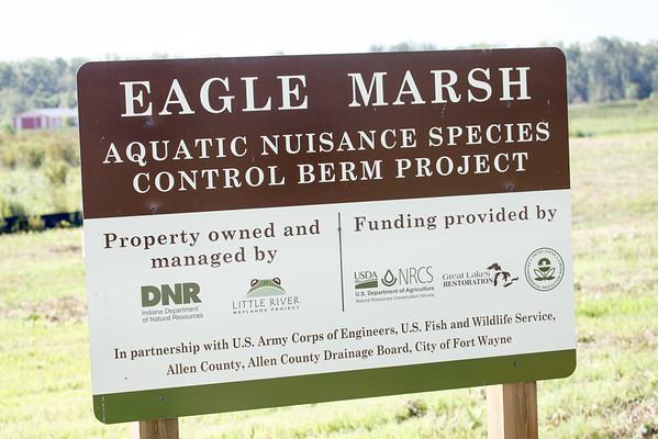 08042015 Eagle Marsh