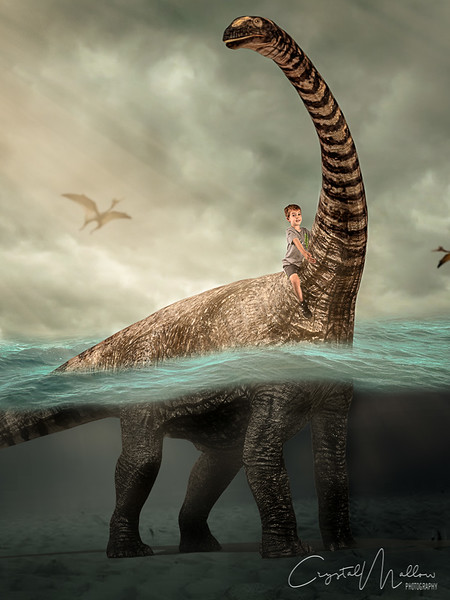sea dinosaur logan-Edit-2.jpg