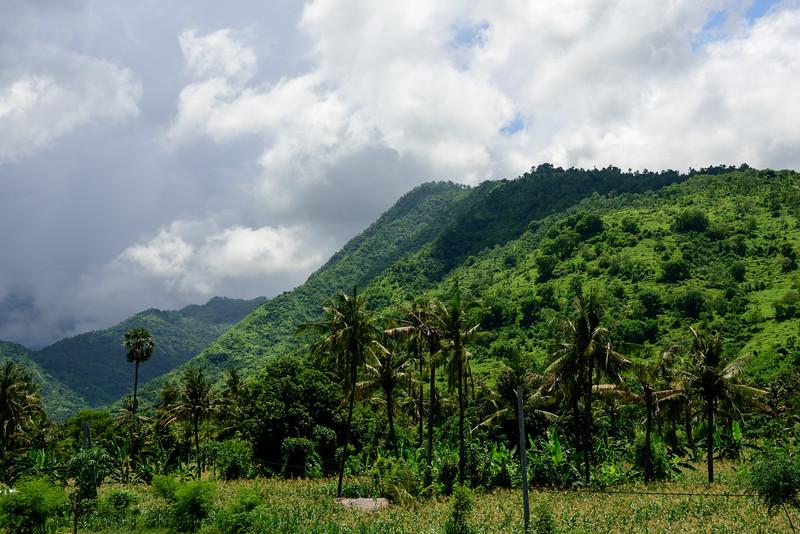 160222 - Bali - 3377.jpg