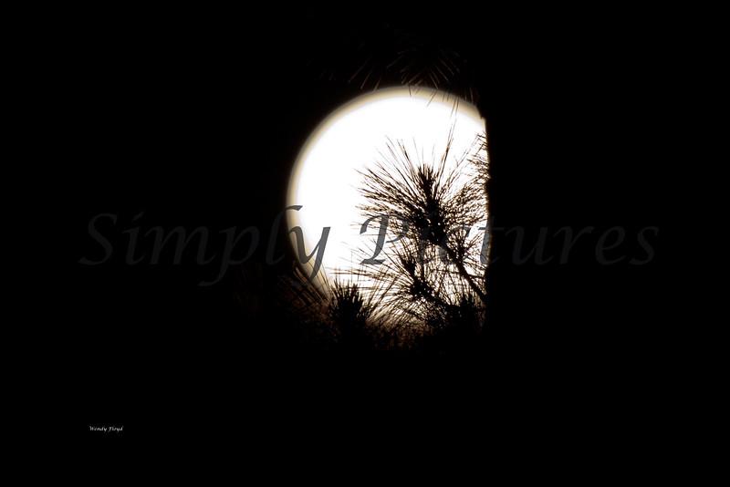 Moon018