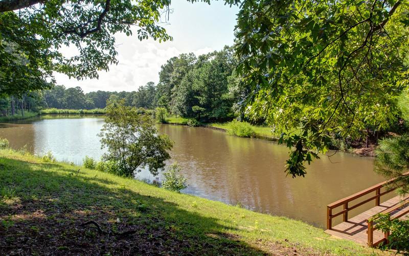 Pond view.jpg