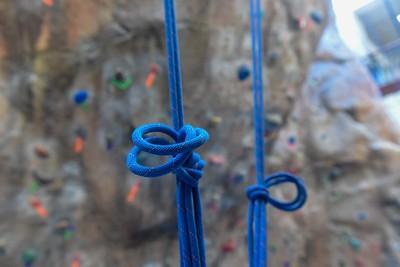Mobile L'Arche guests climb at Belmont
