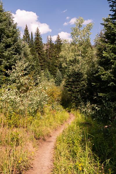 Colorado2018-MountZirkel-0008.jpg