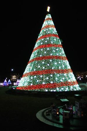 National Christmas Tree 2014