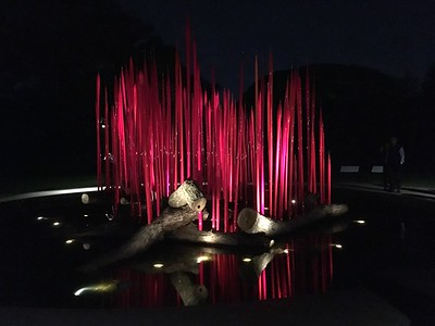 Chihuly Nights at New York Botanical Garden - October 26, 2017