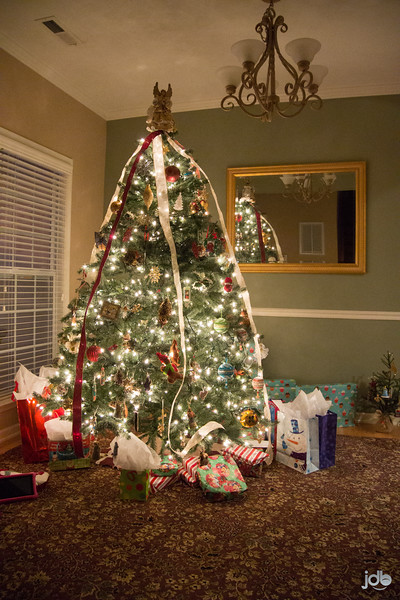 Harrell Christmas '15 (4 of 18).jpg
