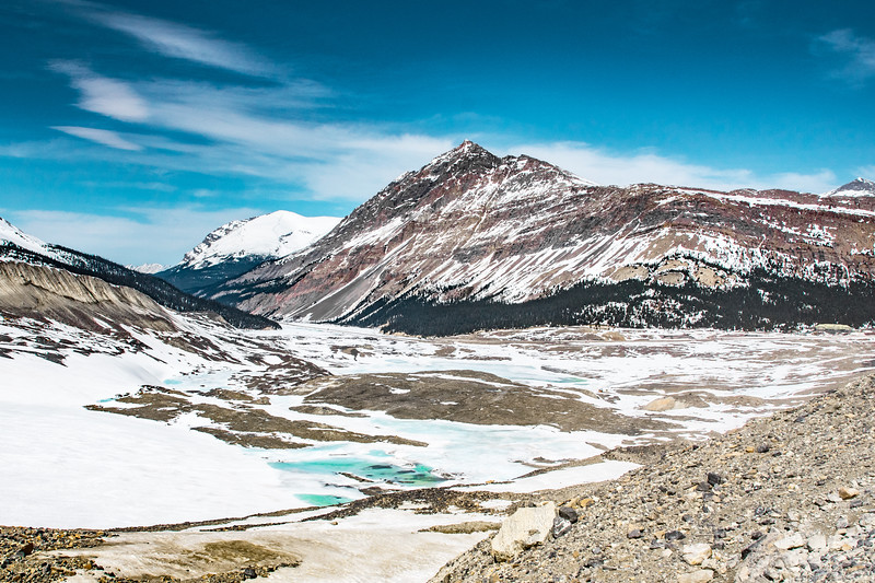 Jasper-0704.jpg
