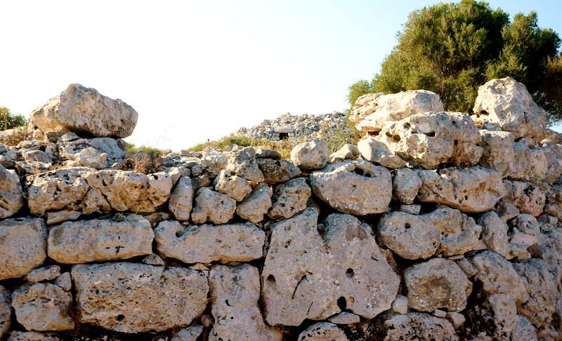 08_19 mahon rock wall DSC04563.JPG