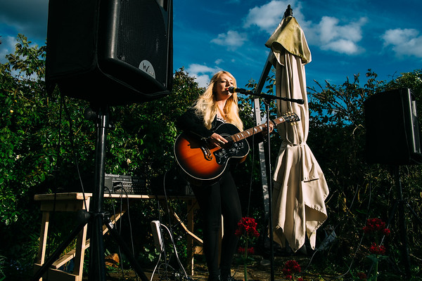 Dulwich Festival 2014