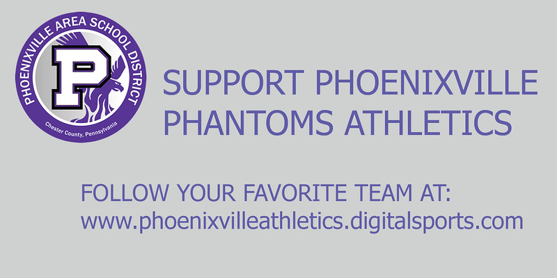 Phoenixville_business_insert.jpg