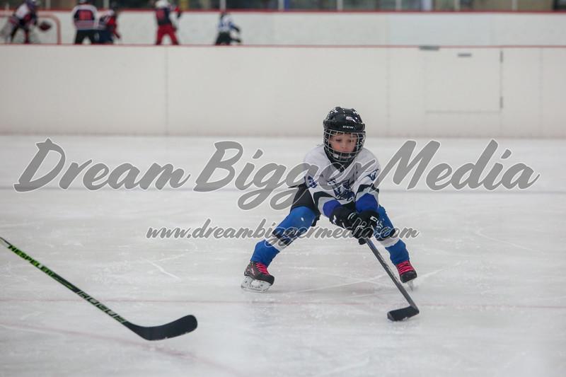 Blizzard Hockey 111719 6987.jpg