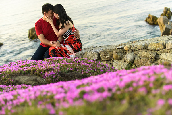 Di and Eric (Engagement Photography) @ Lover's Point, Pacific Grove, California